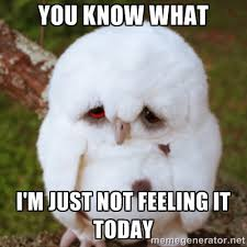 YOU KNOW WHAT I'M JUST NOT FEELING IT TODAY - Sad Owl Baby | Meme ... via Relatably.com