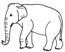 <b>Elephant</b> Curriculum K-3