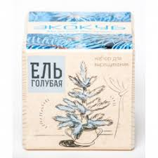 """Отзывы о <b>Набор для выращивания</b> растений <b>ЭкоКуб</b> """"Голубая ель"""""""