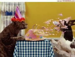 Image result for funny animal birthday pictures