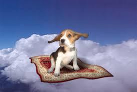 """Résultat de recherche d'images pour """"beagle et roses tremières"""""""