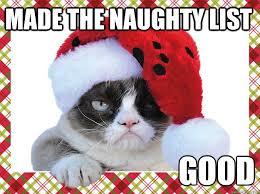 Memes Vault Christmas Memes of Grumpy Cat via Relatably.com