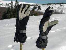 18 Best <b>Ski</b> Gloves & Mittens 2019 (Budget | Warmest | Leather ...