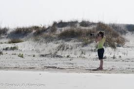 the magic of cumberland island a photo essay the ecotone exchange 7902
