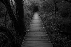 Image result for walking in the dark