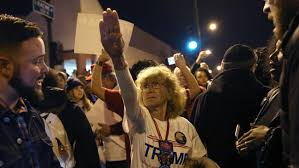 Image result for Trump political protests