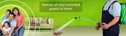 Image result for Eco-Friendly Pest Control for Indoor Use