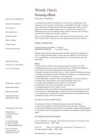 Health Professional Cv Template   Example Good Resume Template Dayjob