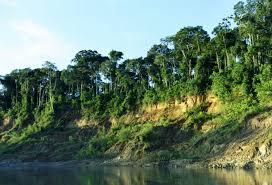 Río Manu