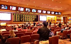 Image result for south point sportsbook images