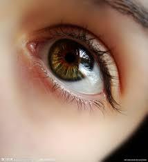 「眼」の画像検索結果