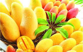Bildergebnis für mango