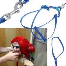 Buy <b>bird harness</b> and <b>leash</b> and get free shipping on AliExpress.com