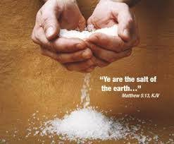 Image result for you are the salt of the earth NKJV