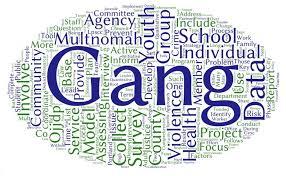 Multnomah County Comprehensive <b>Gang</b> Assessment   Multnomah ...