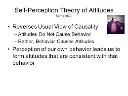 self perception theory essay   essay self perception theory essay slide  jpg social personality