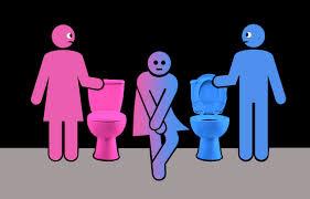 Image result for trans bathroom