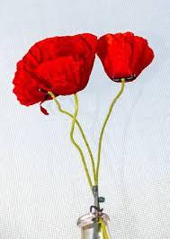 Red Wild Flowers Of <b>Papaver</b> Rhoeas, Corn <b>Field Poppy</b> With Buds ...