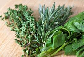 Resultado de imagen de cazuela de barro con plantas aromáticas