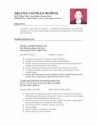 resume examples resume layout tips smlf proper resume format it resume format for job application it support technician resume template it technician resume template it job