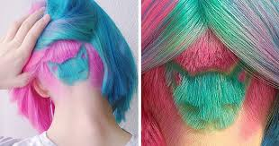 Rainbow Cat <b>Haircut</b> Is The <b>Hot New Trend</b> On Instagram | DeMilked