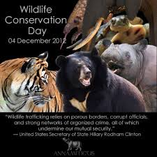 wildlife and conservation  essay speech composition paragraph wildlife ecosystem is self sufficient to support each others need when uninterrupted they are linked by a natural food chain and the biodiversity is