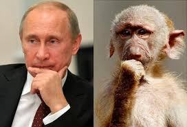 Представитель Минфина США направляется в Европу для переговоров о сохранении санкций против России - Цензор.НЕТ 4923