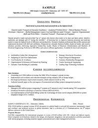 executive resume template resume badak maintenance manager resume sample