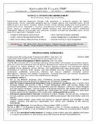 professional skills resume social work professional resume  professional accomplishments resume sample professional skills resume