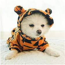 Amazon.co.jp: <b>Dog</b> Tiger Halloween <b>Costume Pet Cosplay</b> Tiger ...