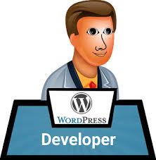 Hire WordPress Expert, Theme, Plugin Programmers India
