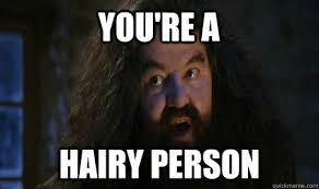 You're a Hairy person - Hagrid - quickmeme via Relatably.com
