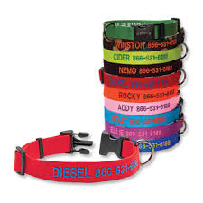 <b>Personalized</b> Side-Release Buckle <b>Dog Collar</b> - Orvis