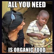 aLL YOU NEED IS ORGANIC FOOD - Skeptical third-world kid | Meme ... via Relatably.com