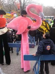 41 Best Halloween images in 2019 | <b>Flamingo costume</b>, <b>Costume</b> ...