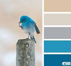 kitchen colors images: color palette  color palette