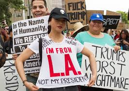 Image result for trump protest
