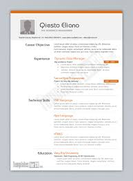 programmer resume example template programmer resume example