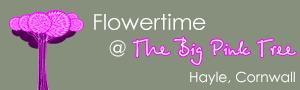 Flowertime @ The <b>Big Pink</b> Tree