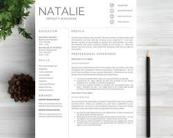 breakupus pretty professional resume template codecountryorg breakupus extraordinary ideas about resume design resume cv template easy on the eye