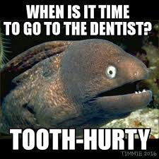 Eel has dental problems | Bad Joke Eel | Know Your Meme via Relatably.com