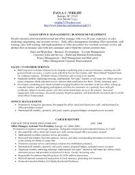 examples of profiles for resumes resume examples 2017 tags examples of good profiles for resumes examples of personal profiles for resumes examples of profile statements for resumes examples of profiles