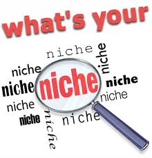 Image result for looking for a niche