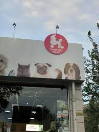 <b>Funny Dog</b> House - Yerevan, Armenia | Facebook