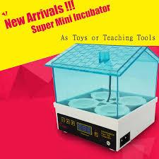 Мини <b>инкубатор</b> для яиц, с цифровой температурой|hatcher ...