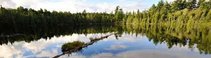 Friends of the Forest Preserve - Adirondack Wild