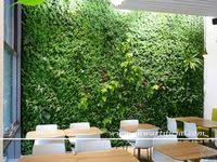 <b>Artificial Green</b> Wall