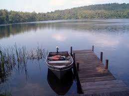 Image result for quiet pond