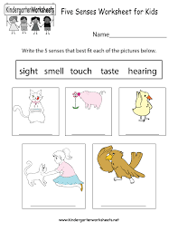 Free Kindergarten Science Worksheets - Learning the basics of science.Earth Science Worksheet · Five Senses Worksheet for Kids