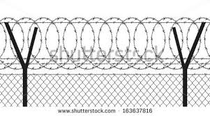 Barbed Wire Wired Fen   D
